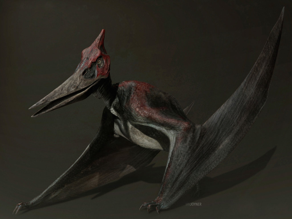 jurassic world concept art   pteranodon by indominusrex-dbichd7